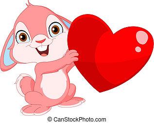 sprytny, królik, valentine