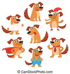 sprytny, pies, brązowy, zabawny, litera, szczeniak