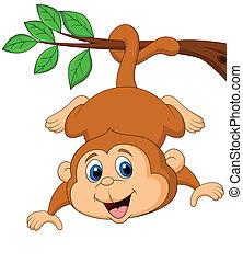 sprytny, wisząc, drzewo, małpa, branc