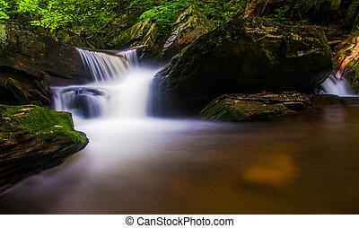 stan, pennsylvania., park, kaskada, dolina górska, potok, rickett's