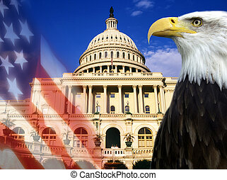 stany, zjednoczony, -, symbolika, patriotyczny, ameryka