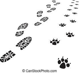 stopa, człowiek, wektor, odciski, pies