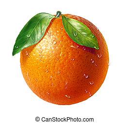 strzyżenie, świeży, kropelki, listowie dwaj, woda, tło., owoc, included., pomarańcza, ścieżka, biały