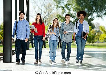 studenci, zaufany, pieszy, campus, hałas