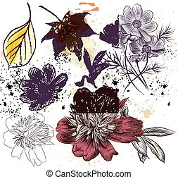 styl, komplet, ręka, wektor, kwiatowy, pociągnięty, wyryty, elementy