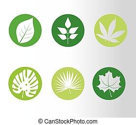 styl, rośliny, sylwetka, liście, ikony, sześć, plik