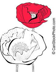 stylizowany, mak, kwiat, ilustracja