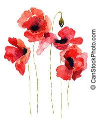 stylizowany, mak, kwiaty, ilustracja