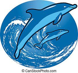 surfing, delfiny