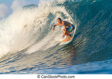 surfing, wave.