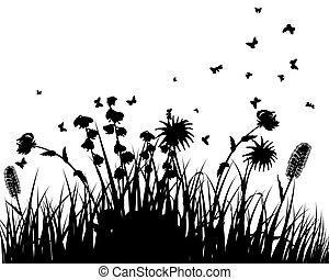 sylwetka, łąka