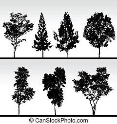 sylwetka, czarnoskóry, drzewo