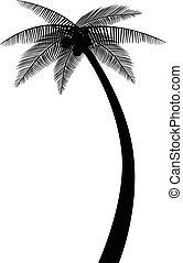 sylwetka, dłoń drzewo