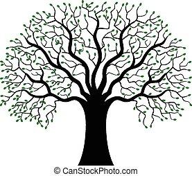 sylwetka, drzewo, zielony, rysunek