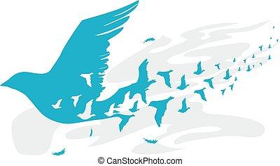 sylwetka, projektować, ptaszki, ilustracja