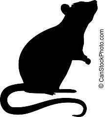 sylwetka, szczur, reputacja