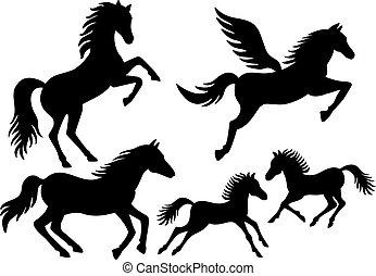 sylwetka, wektor, koń