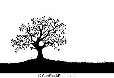 sylwetka, wektor, vectorial, drzewo