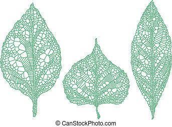 sylwetka, zielony, komplet, wektor, liść