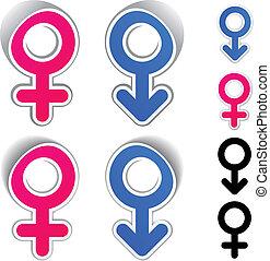 symbolika, wektor, samiec, samica
