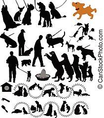 szczur, koty, zwierzęta, psy