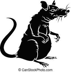 szczur, sylwetka, 001