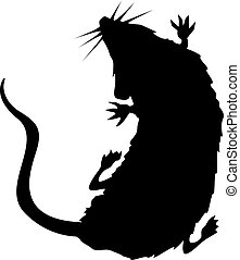 szczur, sylwetka, pełzając