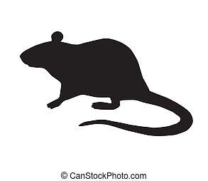 szczur, wektor, płaski, reputacja, sylwetka, czarnoskóry