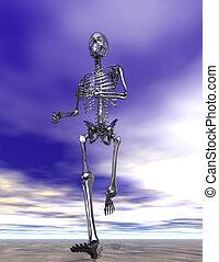 szkielet, wyścigi, mokry piasek, stal