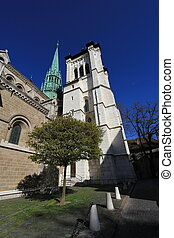 szwajcaria, katedra, genewa, saint-pierre