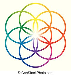 tęcza, życie, nasienie, kolor