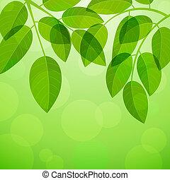 tło, liście