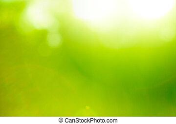tło, natura, abstrakcyjny, flare)., zielony, (sun
