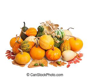 tło, odizolowany, jesień, dynie, stos, liście, biały