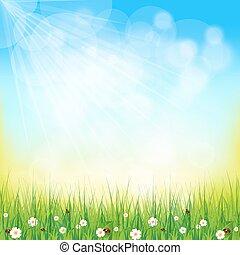tło, słoneczny, zielony, kasownik