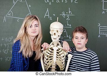 tablica, classmates, szkielet, przeciw, nachylenie