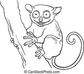 tarsier, koloryt książka, zwierzę, rysunek
