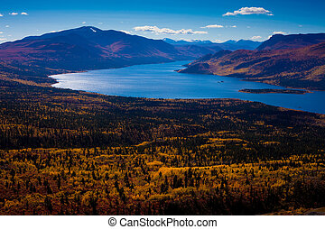 terytorium, kanada, fish, jezioro, yukon