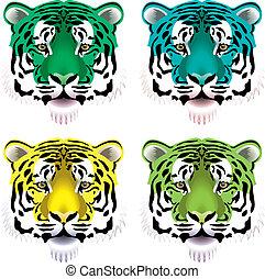 tiger, głowy
