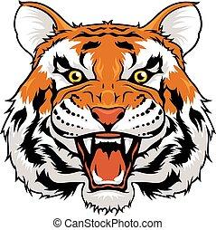 tiger, gniewny