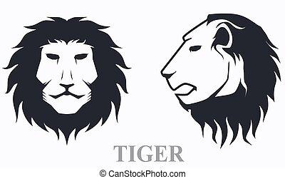 tiger, przód, formować główki boczny prospekt