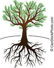to jest, drzewo, podstawy
