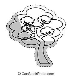 tradycyjny, drzewo, japończyk, ikona