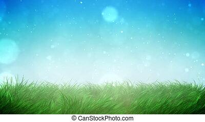 trawa, słoneczny, pętla