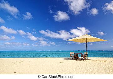 tropikalny, piasek plaża