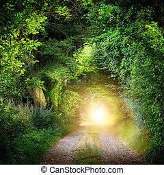 tunel, przewodniczy, drzewa, lekki