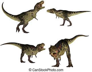 tyrannosaurus, opakujcie