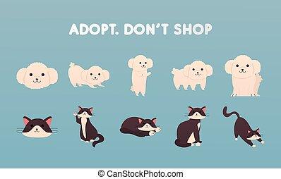 tytuł, sklep, dont, psy, adoptować, grupa, koty