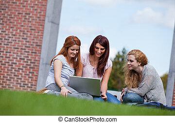 używający laptop, kobiety, młody