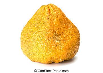 ugli, owoc